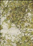 Oasis Leaves Wallpaper Repeating Wall Mural 116-2 By ICH For Galerie